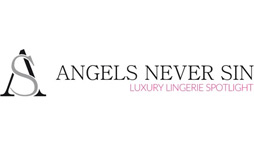 angels never sin logo